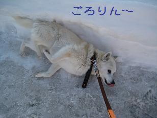 2011_0223_154603-IMG_4289.jpg