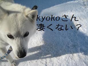 2011_0305_134213-IMG_4455.jpg