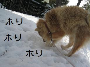 2011_0309_132502-IMG_4480.jpg