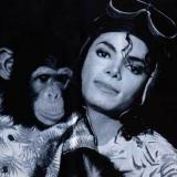 picture-MJs00.jpg