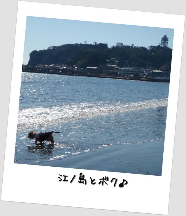 江ノ島とボク