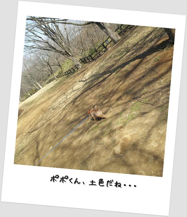 舞岡公園4