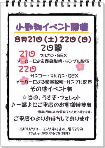 2010-015856.jpg