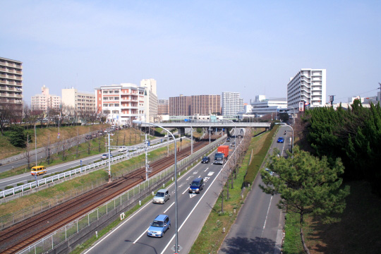 IMG_5321.jpg