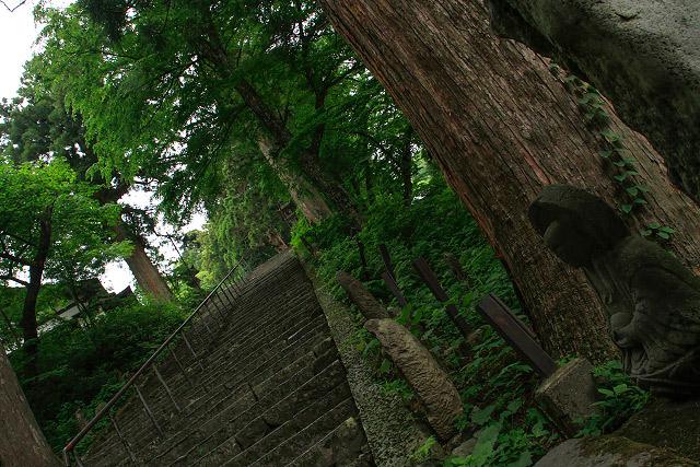 大山寺 夏山開き たいまつ行列