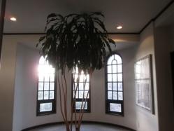資料館の窓