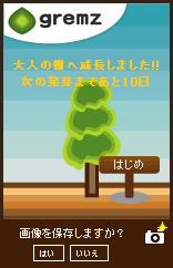 は~ちゃんの木 1本目