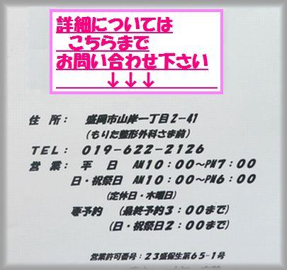 2011 04 28 003