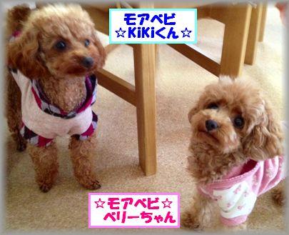 2013 0408 ベリー&キキ2