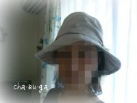 5_20110623164935.jpg