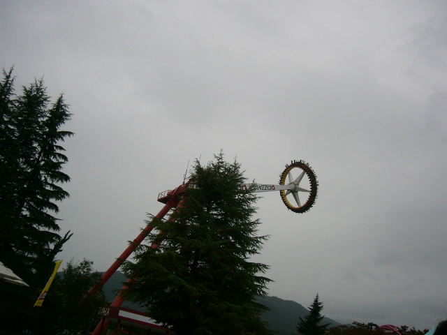 P1040437.jpg