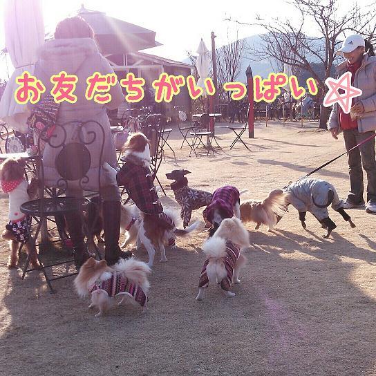 2014NY-ann-NCM_0221s.jpg