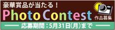 d03_115_12.jpg