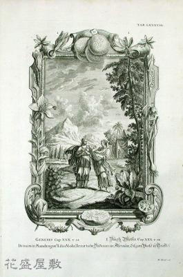 Dudaim in Mandragor. Liliis, Violis, Terrae tube