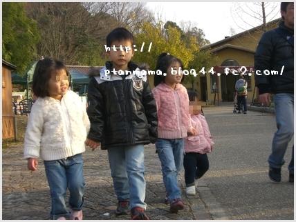CIMG8148-0.jpg