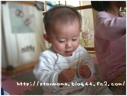 CIMG8594.jpg