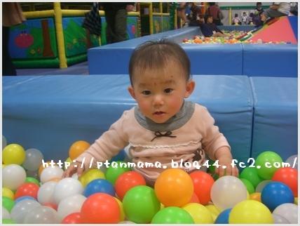 CIMG8818.jpg