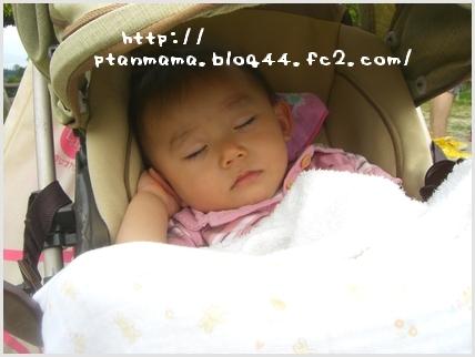CIMG9208.jpg