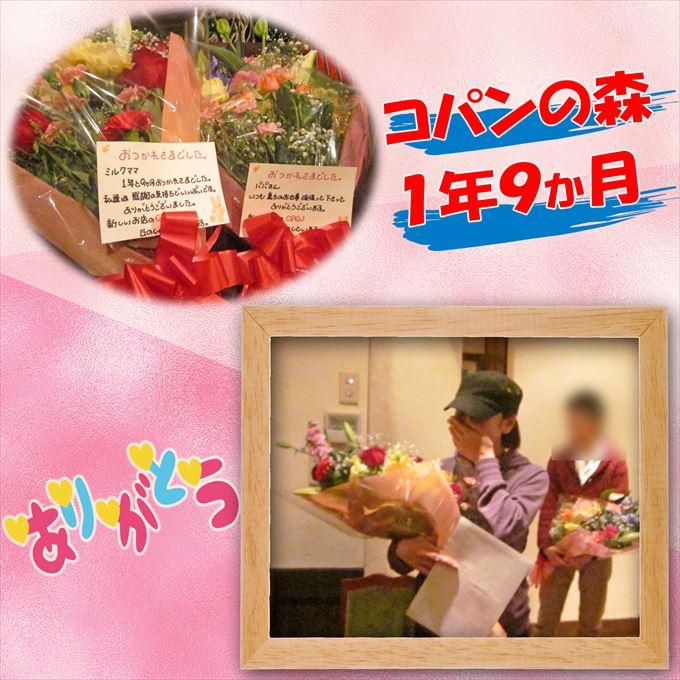 52_20131229164200a5b.jpg