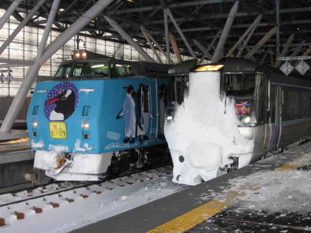 785系スーパーカムイとキハ183旭川動物園号