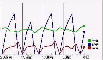 bdcam 2011-05-14 17-19-50-203