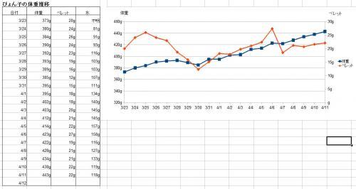 ぴょん子の体重推移130411