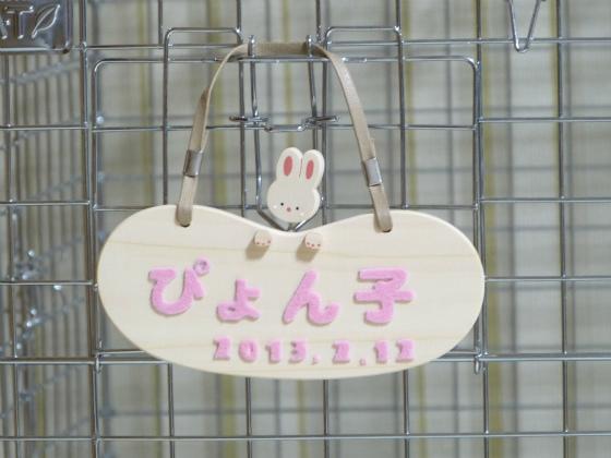 ぴょん子130519_06