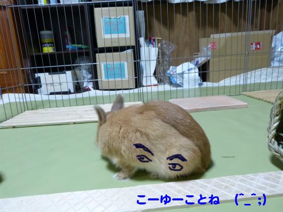 ぴょん子130722_02