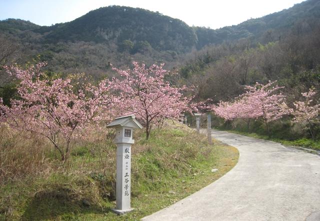 西行法師の道の桜