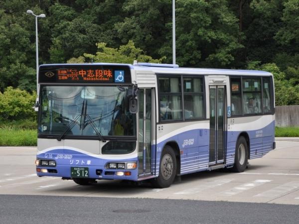 DSC_0205 (2)