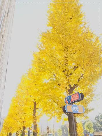 20121222_11.jpg