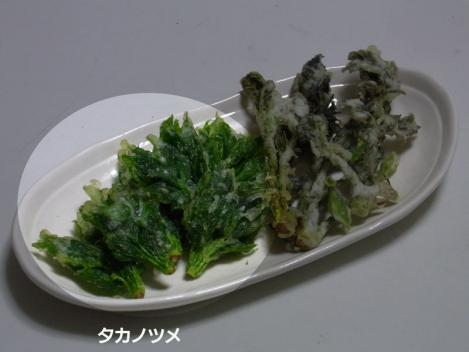 sansai-takanotsumetenpura.jpg