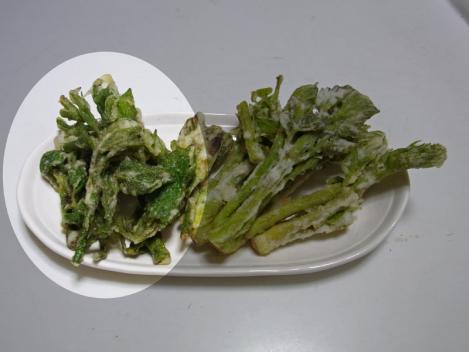 sansai-udonotenpura.jpg