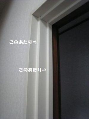 2012081701422290a_20130306150144.jpg