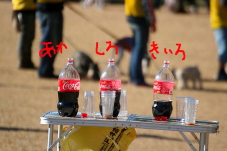 IMG_4597_20111220221547.jpg