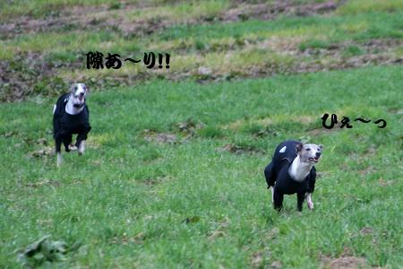 IMG_9510.jpg