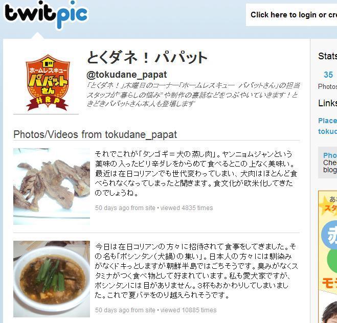黄昏の森のブログ-001いぬ