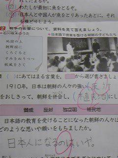 黄昏の森のブログ-静岡のテスト