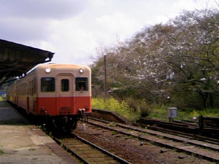 TS380717.JPG