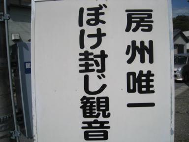 IMG_2579.JPG