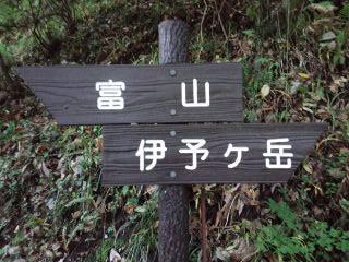 110624_0919~01.jpg