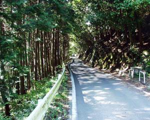 保津川遊歩道