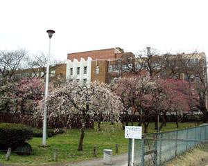 県庁三の丸庁舎
