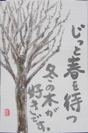 CIMG7556冬の木