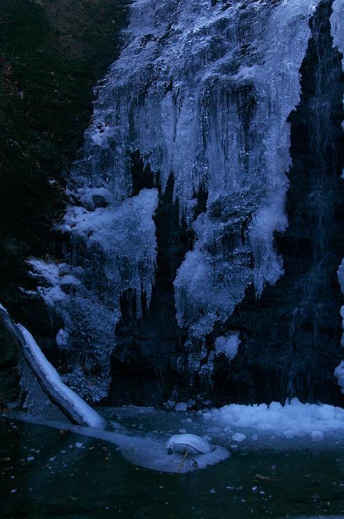 大蛇凍結 2 ~タイラ沢の大滝 2011 その2~