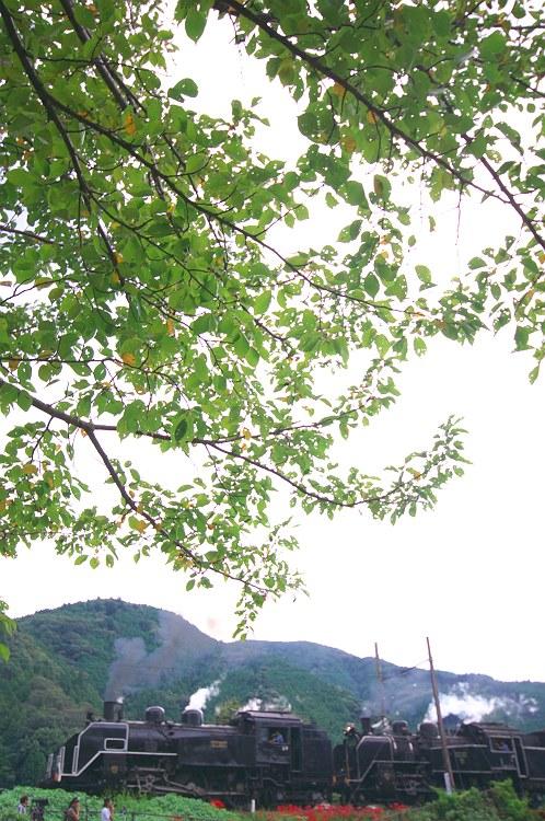 大井川鐵道をのんびりと その二