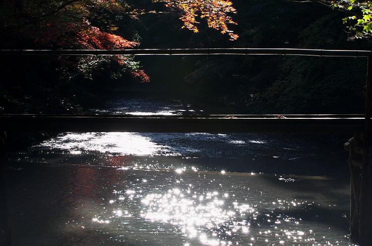 秋の光と… ~小国神社の紅葉 4~