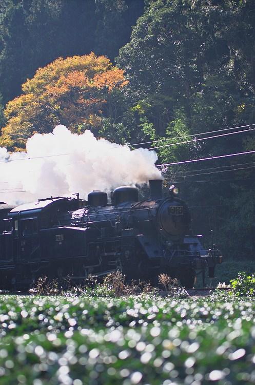 大井川鐵道秋景