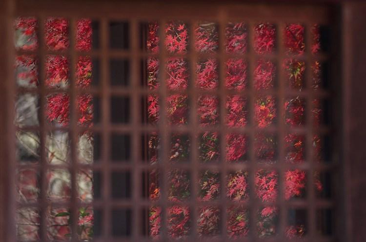 法泉寺の紅葉 2