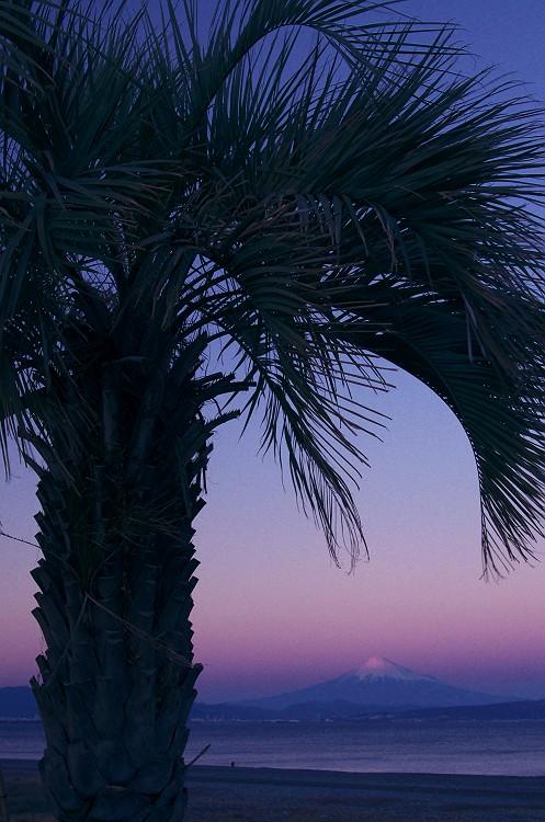 夕暮れの富士 3